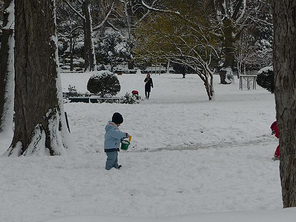 pâtés de neige