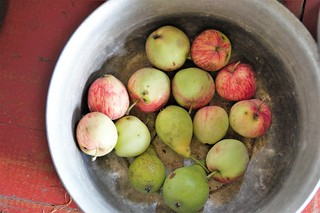 Apples and pears from eco-farming