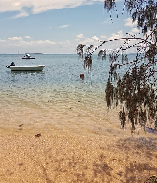 Perfect morning for a swim at Coochiemudlo Island