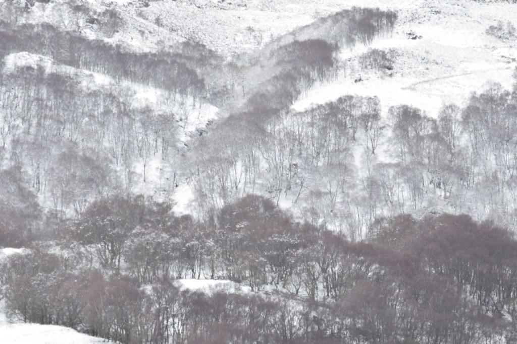 West Highlands of Scotland.