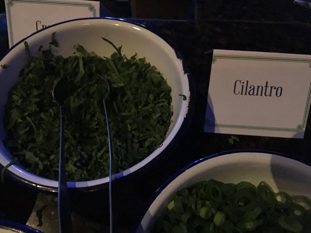 cilantro_1