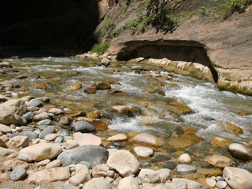 The Virgin River tumbles over rocks about the middle of the hike into the Narrows in Zion National Park, Utah