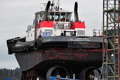 Tugboats - 2018