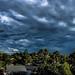 storm 2_edited
