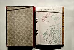 The Shine Book