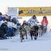 Sat, 02/03/2018 - 11:58 - Yukon Quest 2018 - Julien Schroder
