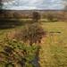 Rural Kent Walks