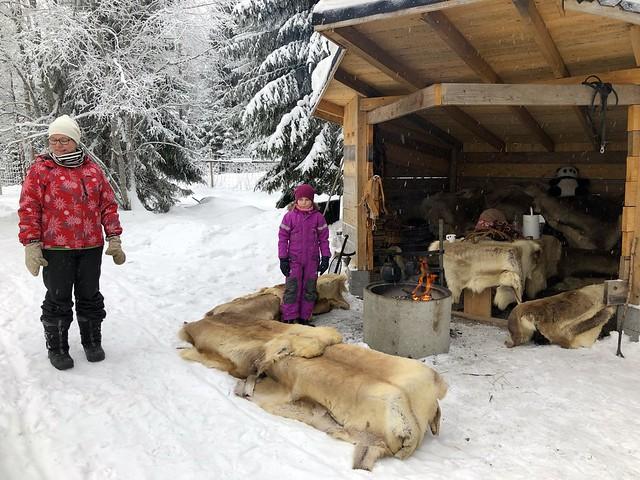 Ähtäri zoo, Finland 2018 103