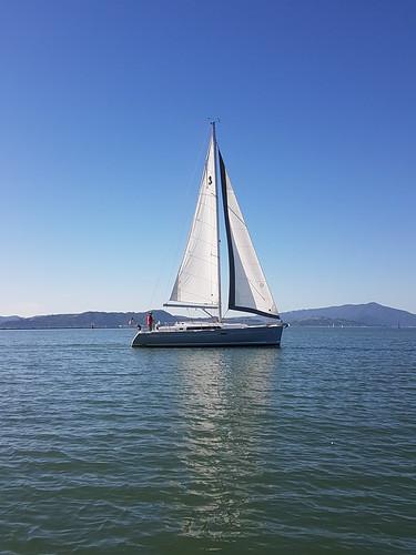 Tradewinds Sailing School Club San Francisco Bay Area - Tradewinds cruise club
