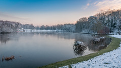 L'étang des Mousseaux en hiver #2 - Photo of Tigery