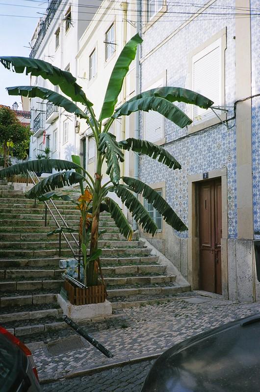 Portugal '16