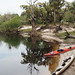 Peace River kayaks