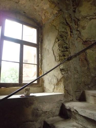 Droyßig Treppe im Schloß