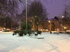 Lueur des lumières sur la neige