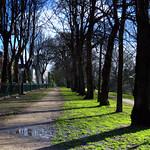 Walkway in Avenham