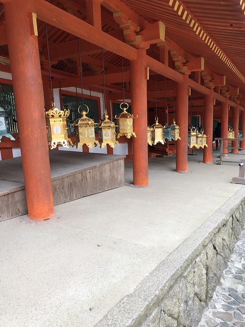 Some of the hundreds of lanterns in Kasuga Taisha