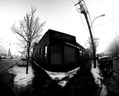 Excalibur - Griffintown