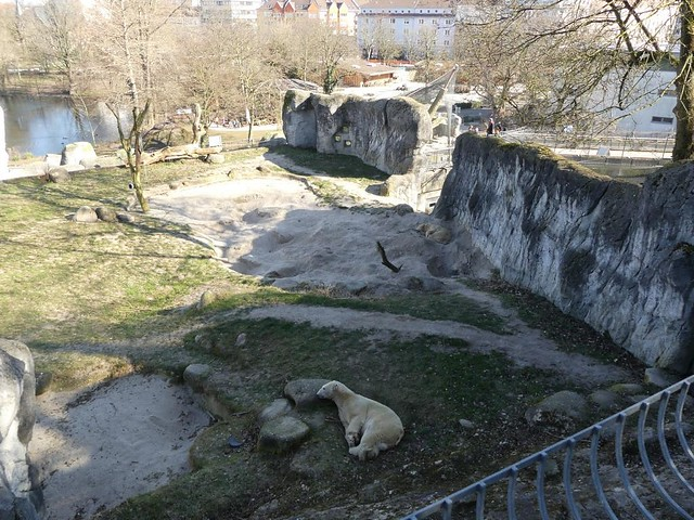 Eisbäranlage, Zoo Karlsruhe
