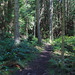 Miller Peninsula State Park by PTMurphus