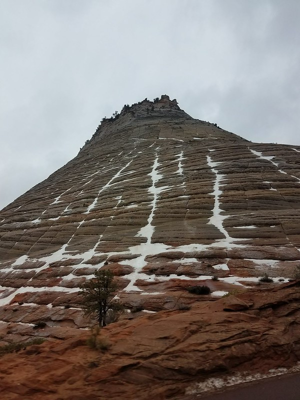 Checkerboard Mountain at Zion National Park