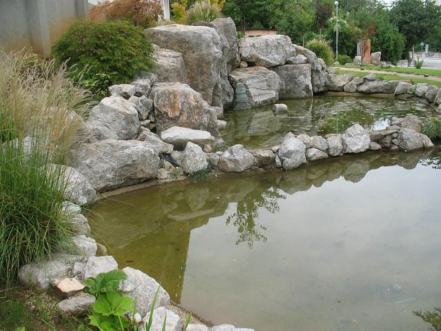 Japanese garden in my neighborhood