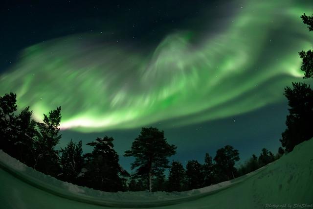20180222-Finland-DSCF1582