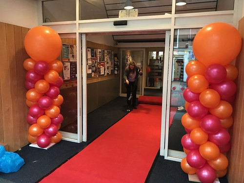 Ballonpilaar Breed Rond Bibliotheek Plus Leiden
