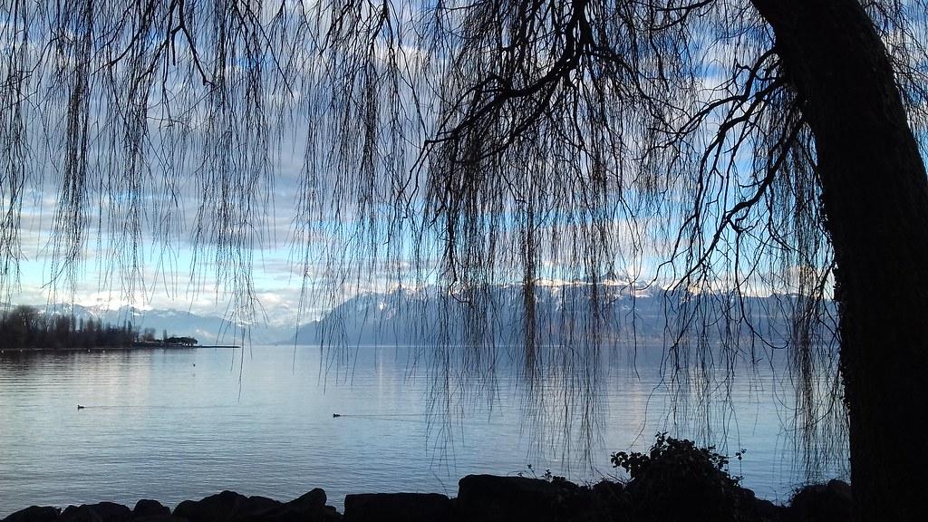 Leman lake after a winter rain.