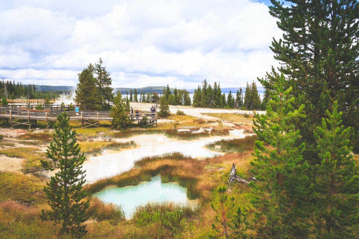 Yellowstone-7