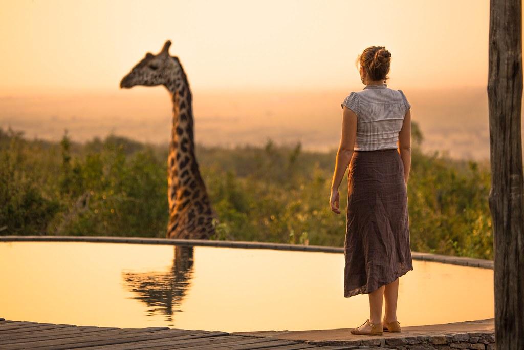 southern africa safari
