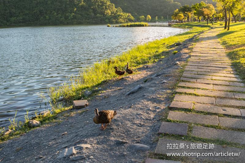 宜蘭冬山鄉梅花湖,靜享湖光、山色、夕陽,一起騎著單車環湖、搭船遊湖,感受這片迷人的湖景