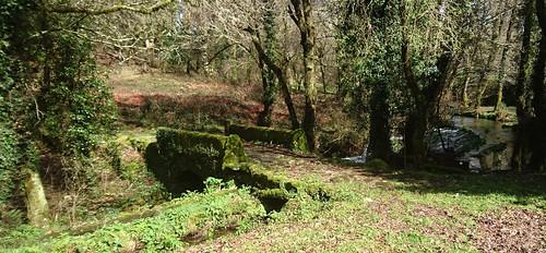 Ponte medieval de Saramagoso _ Vesacarballa