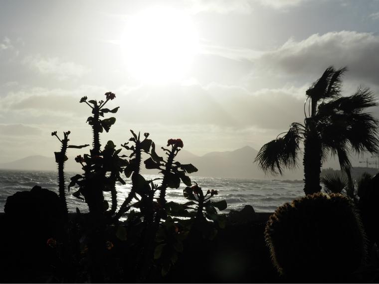 puerto del carmen landscape 2