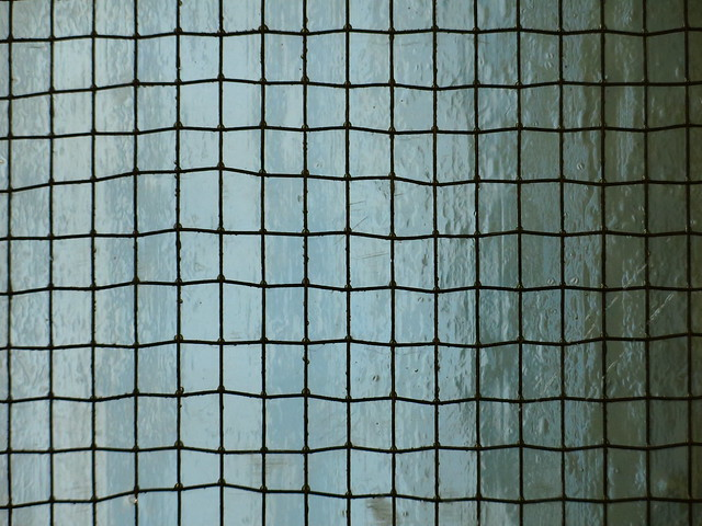 the glass pane | wired glass