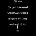 DEL-Nico-300