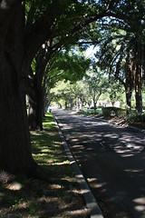Parkland Estates, Tampa