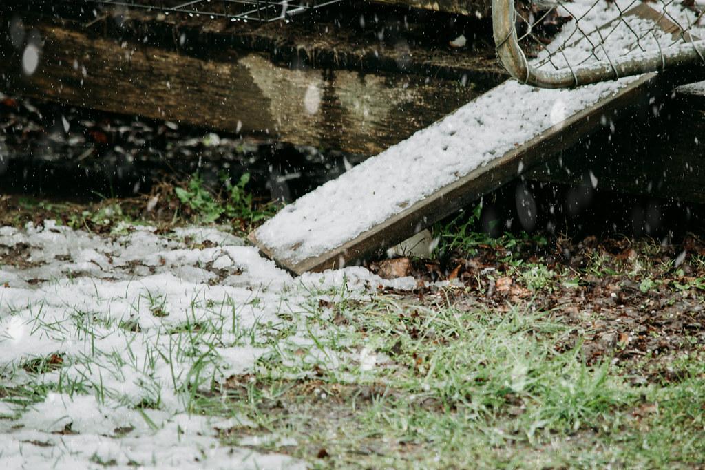 snowsnow03242018-0872032418