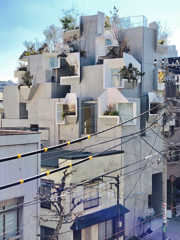 Tree-ness House, Tokyo, Japan