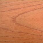 Toona ciliata wood