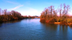 The Willamette River from Knickerbocker Bridge in Eugene, Oregon