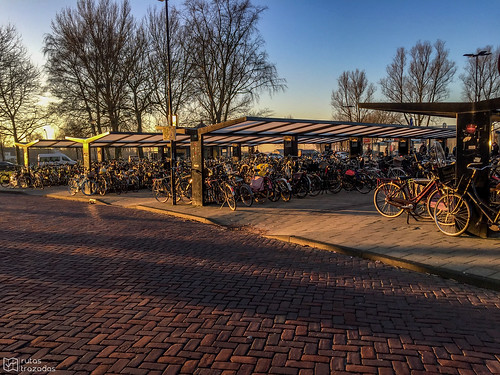 Bike Parking Edam