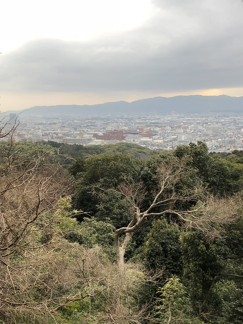 View from lookout point at Fushimi Inari-taisha