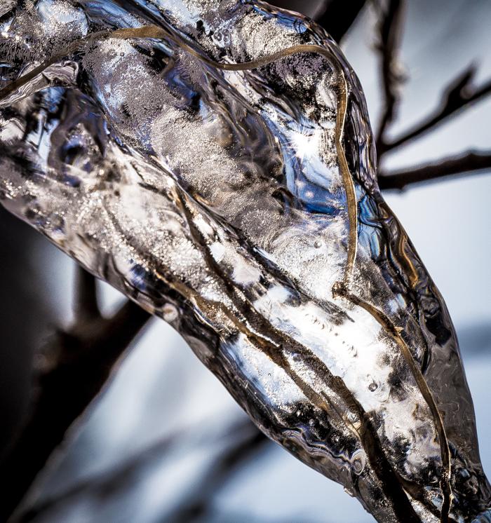 jää luontokuva taidekuva jäätynyt oksa jääpuikko jäätaide