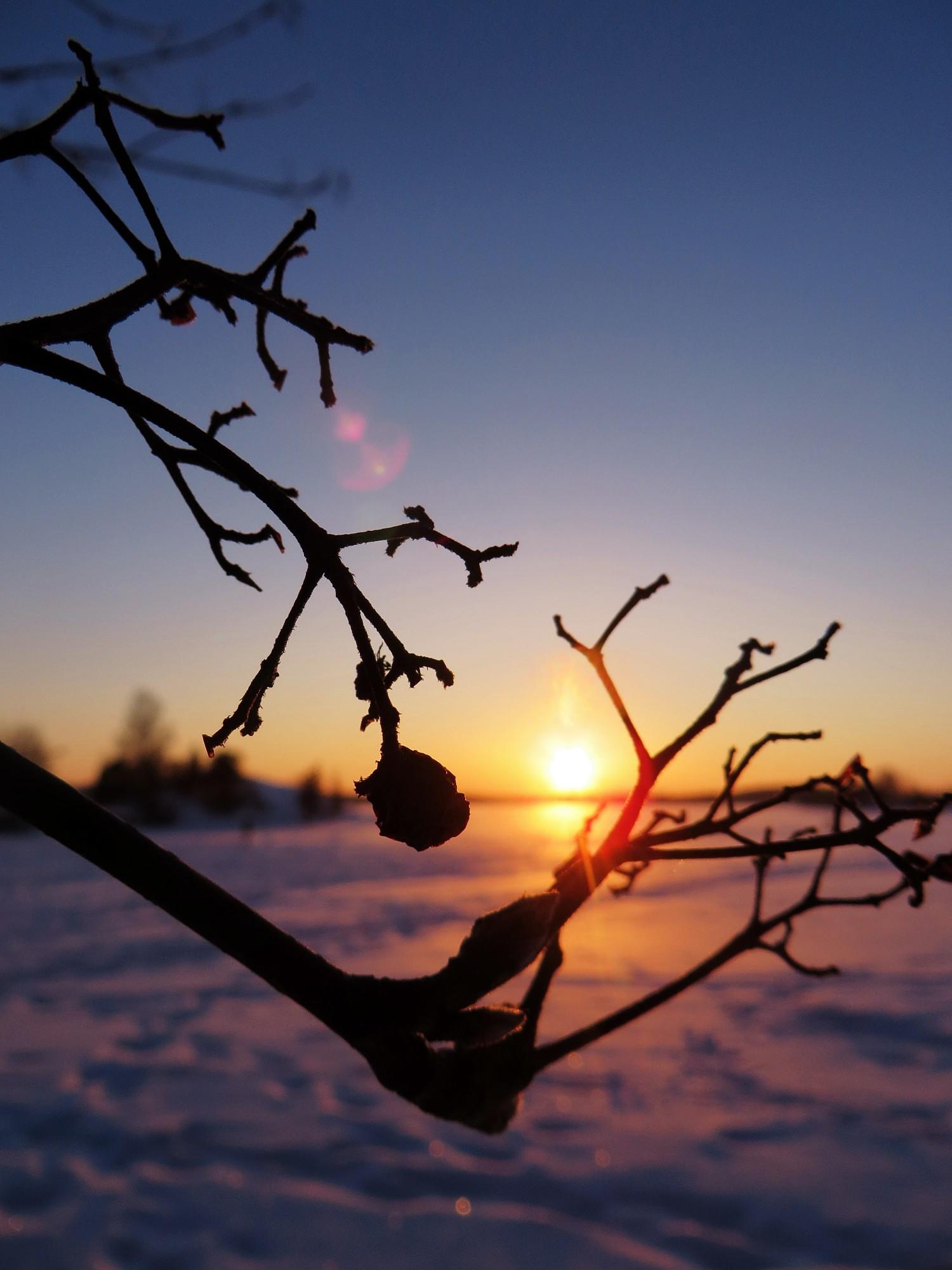 talvenkauneimmat2
