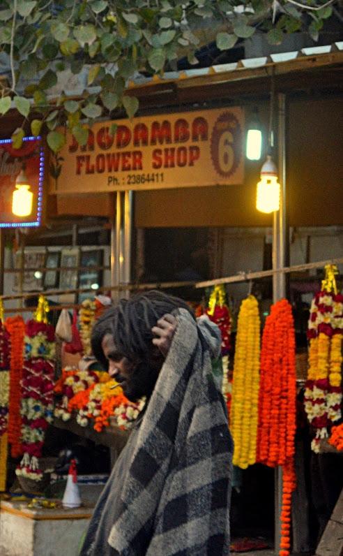 Spring in Delhi: Flower Shop