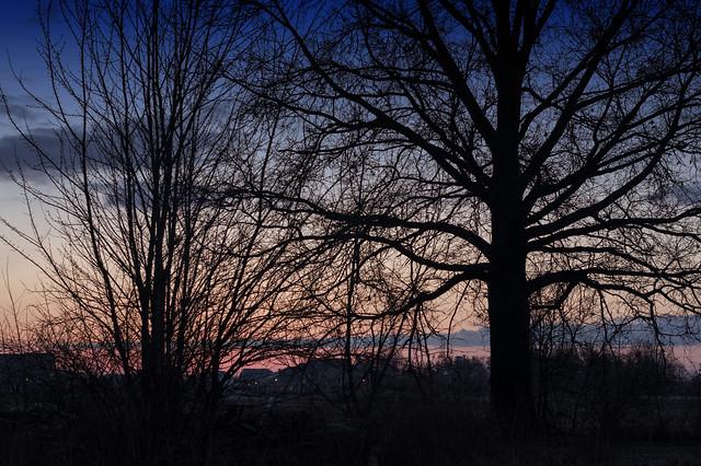 March 13 - Sunrise