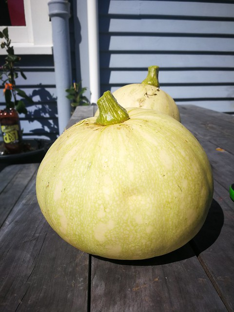 2 individual crown pumpkins