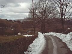 A March lane