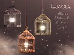 Granola. Allison's Distressed Birdcage Lamps.