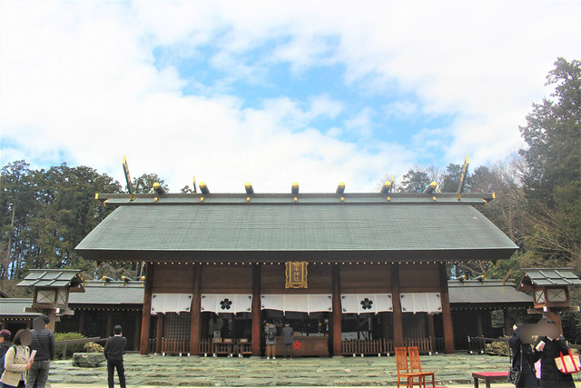 sakuragi-gosyuin03030
